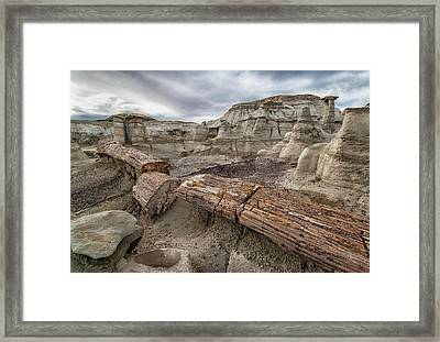 Framed Print featuring the photograph Petrified Remains by Alan Toepfer