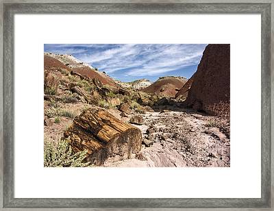 Petrified Wood In The Painted Desert Framed Print by Melany Sarafis