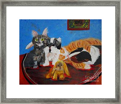 Pets Home Framed Print