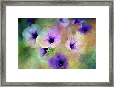 Petunia Pallet Framed Print