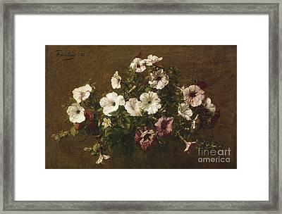 Petunias Framed Print by Ignace Henri Jean Fantin-Latour