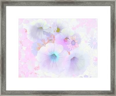 Petunias In Pastel - Floral Abstract Framed Print by Rayanda Arts