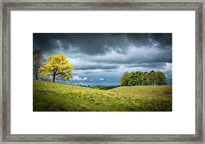 Framed Print featuring the photograph Petworth Dark And Light by Michael Hope