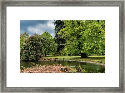 Petworth Lake With Dog Framed Print by Michael Hope