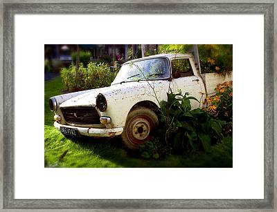 Peugeoted Framed Print by Jez C Self