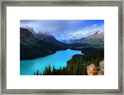 Peyto Lake Banff National Park Majestic Beauty Framed Print by Wayne Moran