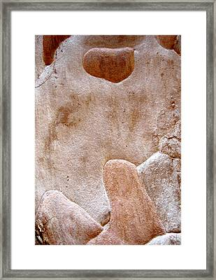 Phallic - Tree Bark Pareidolia Framed Print