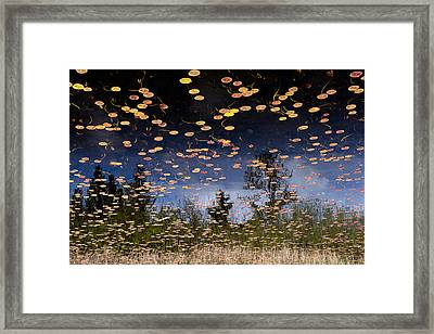 Phantom Lake Framed Print by Alex Levine