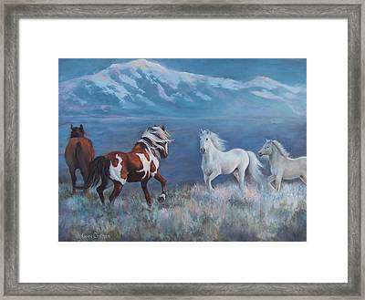 Phantom Of The Mountains Framed Print