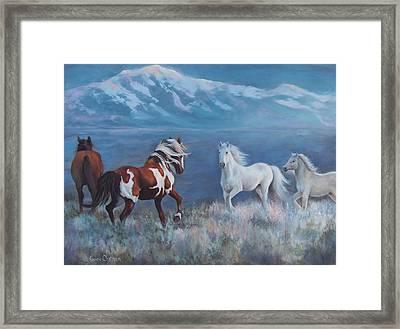 Phantom Of The Mountains Framed Print by Karen Chatham