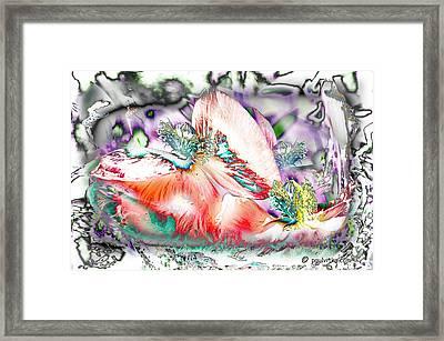 Phantom Quantom Thing.... Framed Print