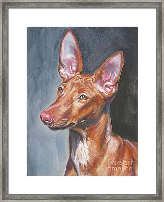 Pharaoh Hound Framed Print by Lee Ann Shepard