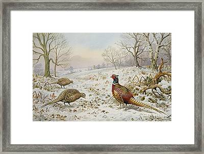 Pheasant And Partridges In A Snowy Landscape Framed Print by Carl Donner