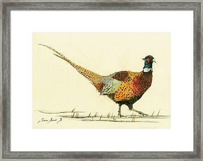 Pheasant Bird Art Framed Print by Juan  Bosco