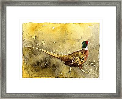 Pheasant Framed Print by Eunice Olson