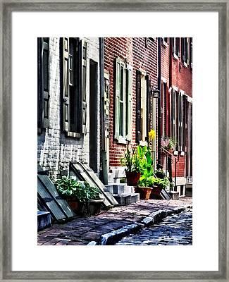 Philadelphia Pa Street With Flower Pots Framed Print by Susan Savad