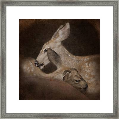 Phileo Framed Print