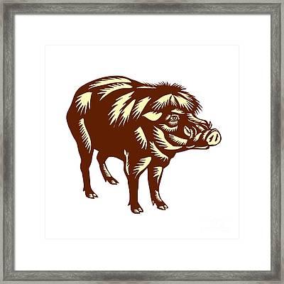 Philippine Warty Pig Woodcut Framed Print by Aloysius Patrimonio