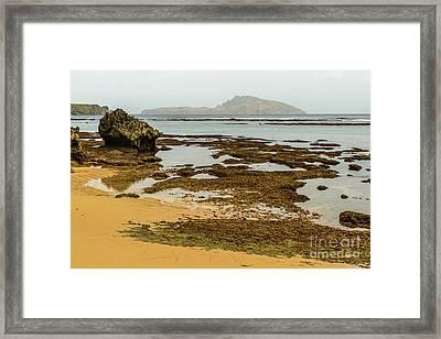 Phillip Island 01 Framed Print
