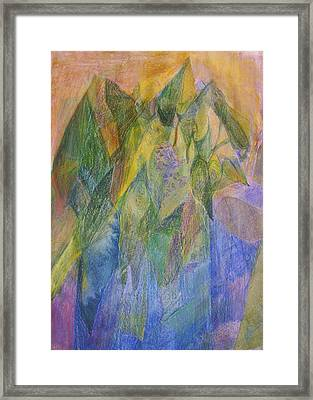Philodendron Phun Framed Print by Jan Cline-Zimmerman