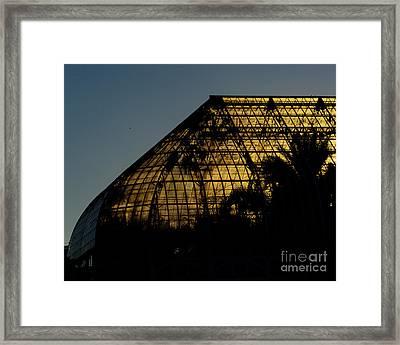 Phipps Conservatory - 4 Framed Print