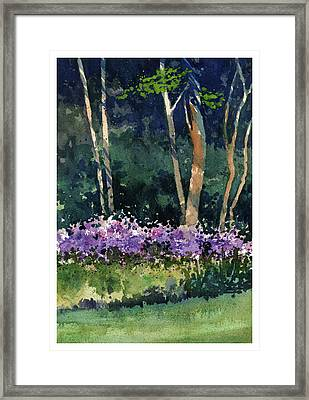 Phlox Meadow, Harrington State Park Framed Print