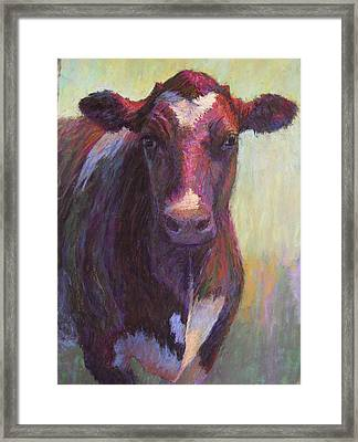 Phoebe Of Merry Mead Farm Framed Print by Susan Williamson