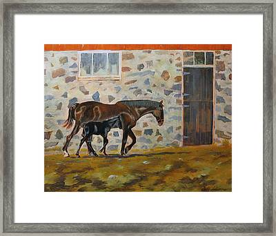 Phoenix And Her Foal Framed Print