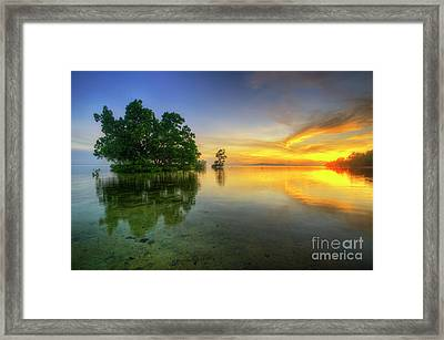 Framed Print featuring the photograph Phoenix Nights 5.0 by Yhun Suarez