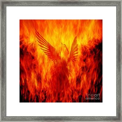 Phoenix Rising Framed Print by Andrew Paranavitana