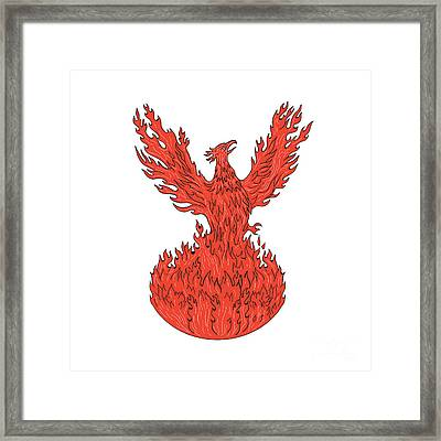 Phoenix Rising Fiery Flames Drawing Framed Print