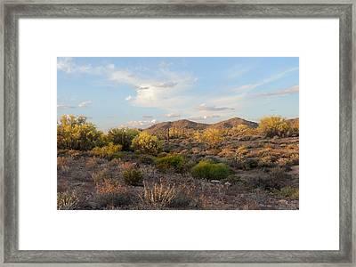 Phoenix Sunset Framed Print