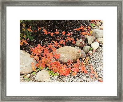 Framed Print featuring the photograph Photo by Dan Whittemore