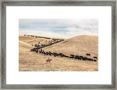 Switchback Trail Framed Print