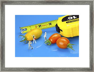 Framed Print featuring the photograph Photography Of Tomatoes Little People On Food by Paul Ge