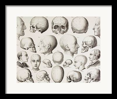 Psychiatric Drawings Framed Prints