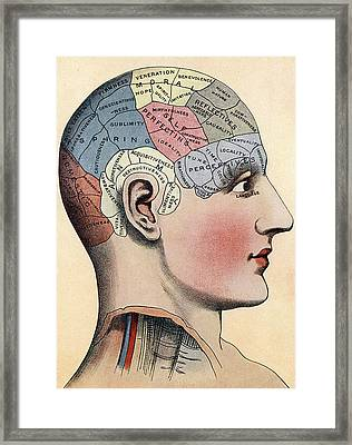 Phrenology Chart Framed Print by American School