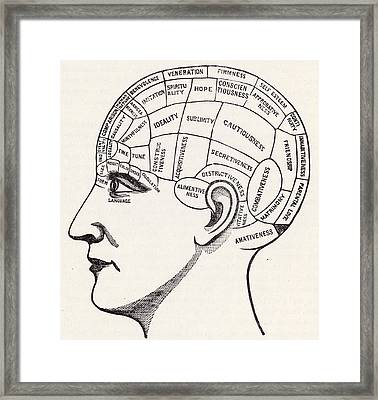 Phrenology Framed Print by English School