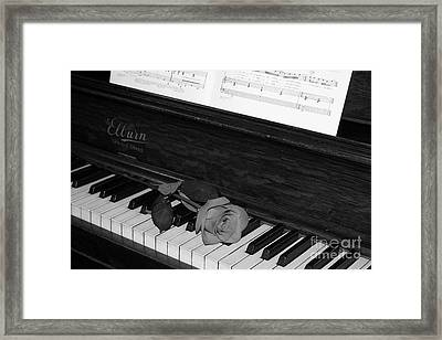 Piano Rose Framed Print