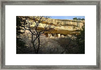 Pic 5 Framed Print
