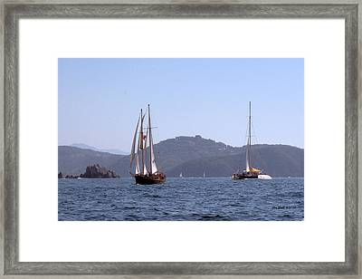 Picante And Patricia Belle Framed Print