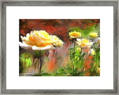 Picaras Framed Print