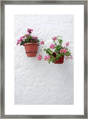 Picena 16 Framed Print by Jez C Self