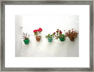 Picena 5 Framed Print by Jez C Self