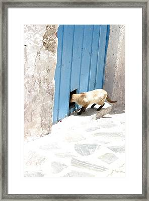 Picena 8 Framed Print by Jez C Self
