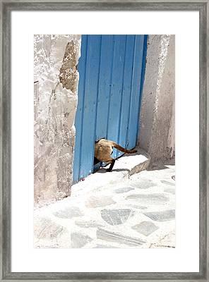 Picena 9 Framed Print by Jez C Self
