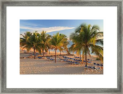 Pick Any Chair Framed Print