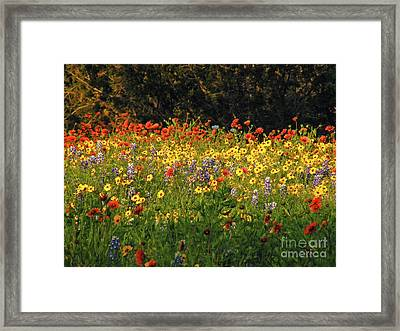 Pick Me Framed Print