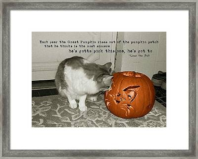 Pick Me Pick Me Quote Framed Print by JAMART Photography