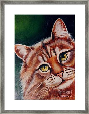 Pick Me Framed Print by Val Stokes
